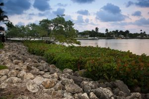 The Intracoastal Waterway at The Estuary at Delray Beach.